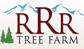 Boone Christmas Tree Farms