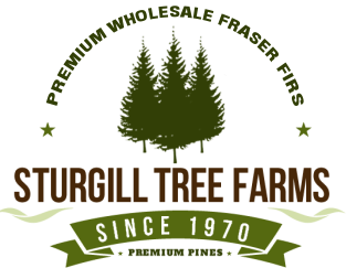 national christmas tree association essay contest Each year, ncta hosts a national tree contest, at which growers, industry experts  and consumers vote to select the real christmas tree grower who will provide.